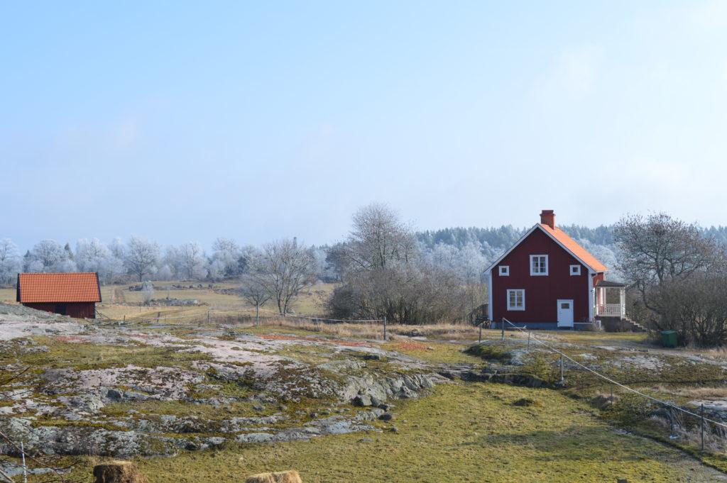 Fin utsikt från köket över landskapet och grannarnas hus.